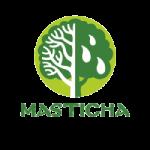 Masticha kedvezmények